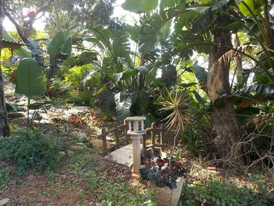 Property For Sale in Trafalgar, Trafalgar